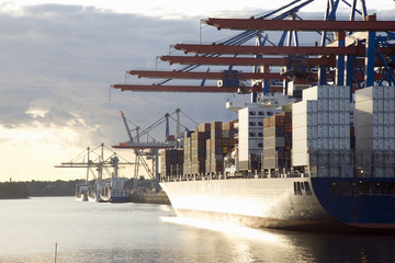Deutschland, Hamburg, Containerschiff im Waltershofer Hafen am Burchardkai