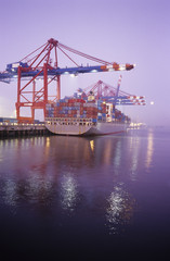 Deutschland, Hamburg, Containerschiff im Waltershofer Hafen an der Quay Predoehl
