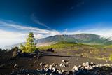 beautiful volcano landscape in La Palma Canary Islands poster