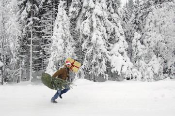 Mann im Schnee, trägt Weihnachtsbaum