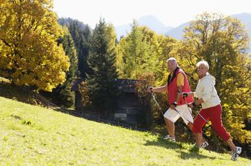 Senioren Paar Nordic Walking, lächeln, Seitenansicht, Portrait