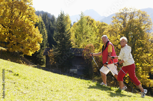 Senior couple Nordic walking, smiling, side view, portrait