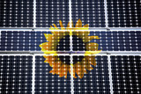 Sun flower behind solar cells