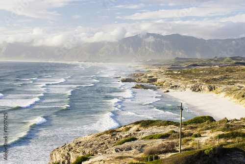 South Africa, Gansbaai, Walker Bay Nature 'Reserve
