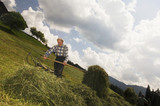 Austria, Salzburger Land, hay harvest