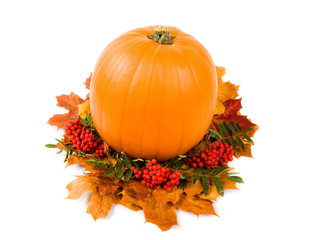 Fall harvest decoration, isolated on white