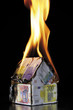House of Euro notes burning