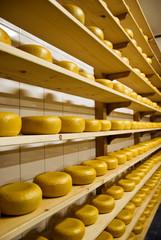 Traditional Dutch cheese called Gouda