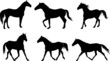 vector set of horse silhouette