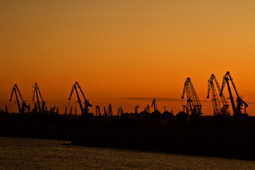Crane silhouettes in a harbour at the sunset.