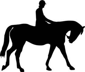 illustration of a horse and jockey