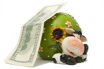 Cow-coin box under hundred dollar denomination
