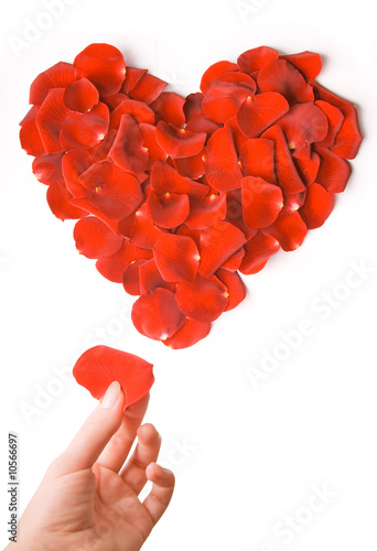 Making heart from rose petals