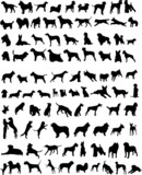 100 silhouettes of dogs