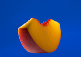 thin slice of peach isolated on blue poster