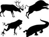 Wildlife silhouette poster
