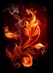 Płonące kwiaty
