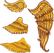 Tattoo style vector wings illustrations collection