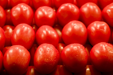 Red Plum Tomatoes