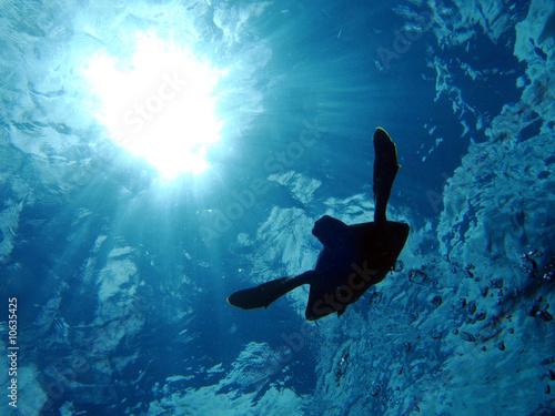 Fotobehang Koraalriffen 空カメ