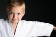 Karate Boy - 10639621