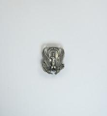 Old Navy insignia pin