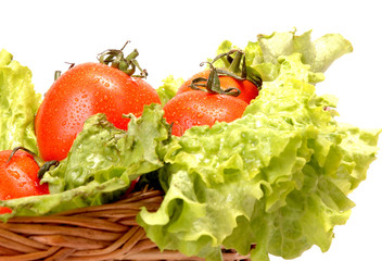 Tomatoes and Cabbage in a basket