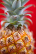 Fresh Pineapple on Red Background