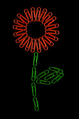 Paperclips arranged into the shape of the flower.