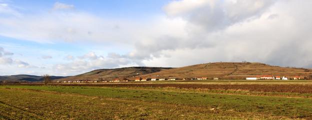 Panorama einer Kellergasse