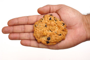 cookie on hand