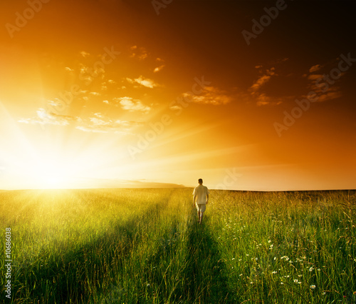 one man and field of summer grass