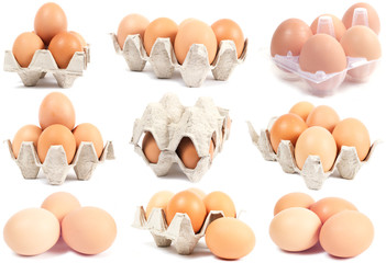 collection sets of eggs