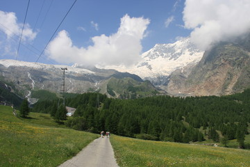 Wallis Saas Fee