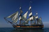 Sailing Ship - 10708223