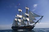 Sailing Ship - 10708245