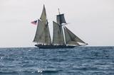Sailing Ship - 10708256