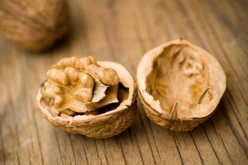 Open walnut