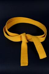 cintura di karate