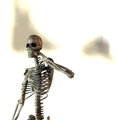 skeleton  with cigarette