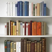 Bücherregal 01