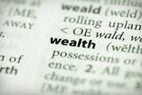 Dictionary Series - Economics: wealth poster