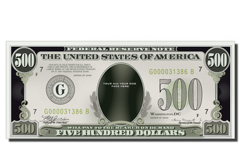 USA game Banknote