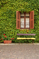Empty bench against wall of ivy and open shutters
