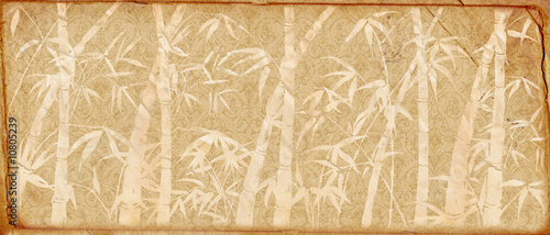 branches of a bamboo on old paper. Retro.
