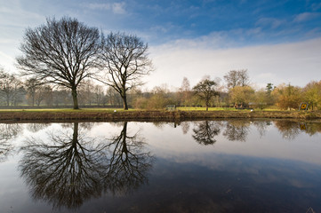 dutch landscape in winter