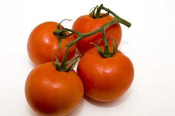 Tomatoes on Vines