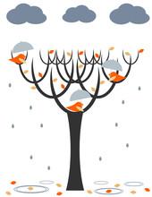 Regen Vögeln