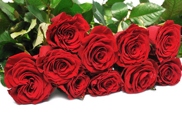 big bouquet red roses