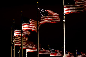 Flags at the Washington Memoria at night
